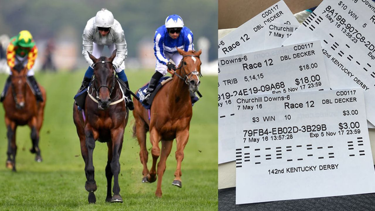 How to Master Horse Betting